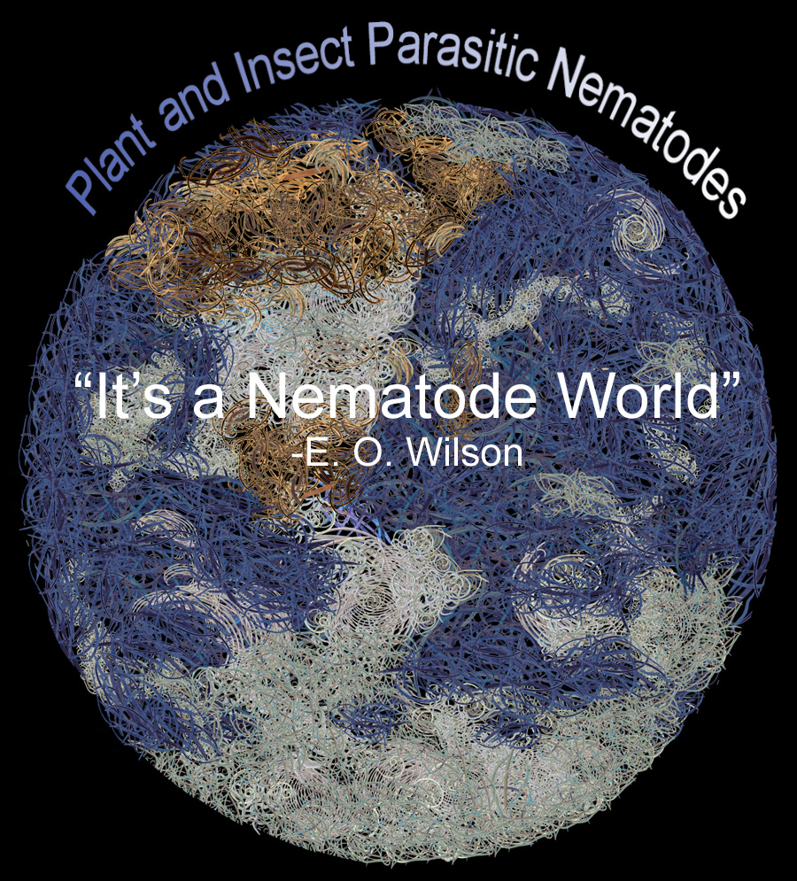Plant and Insect Parasitic Nematodes